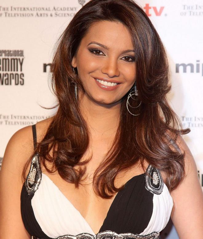 Diana Hayden Net Worth
