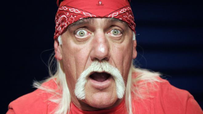 Hulk Hogan Net Worth