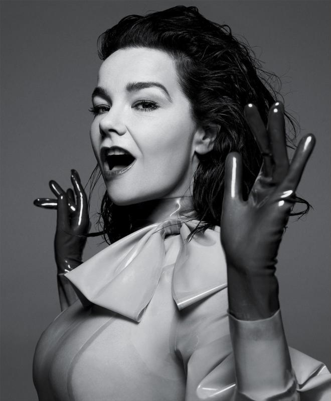 Björk Net Worth