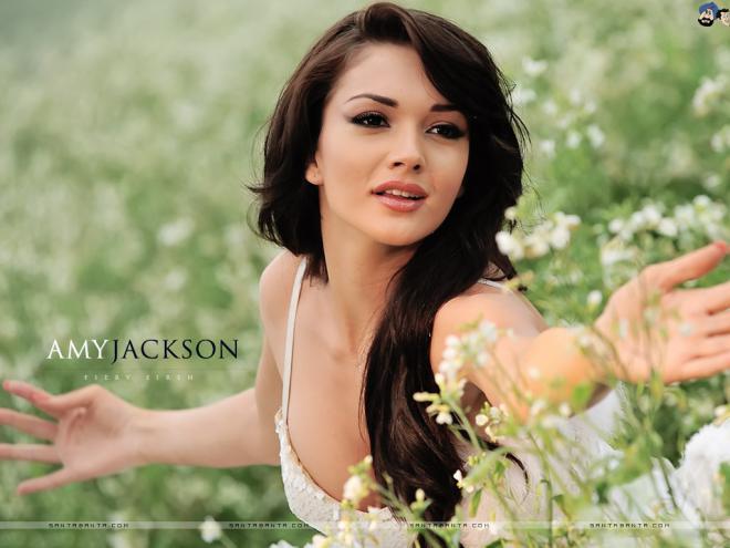 Amy Jackson Net Worth