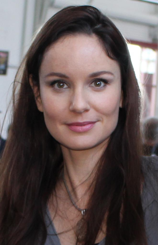 Sarah Wayne Callies Net Worth
